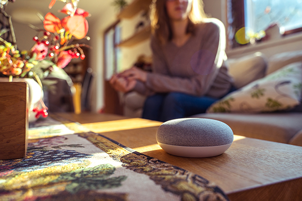 Google Home Voice Assistant offering Voice Search capabilities